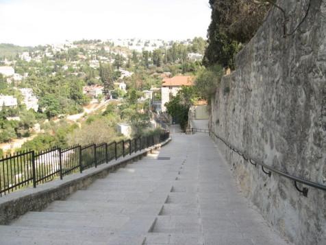 מדרגות מכנסית הביקור