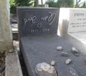 בית קברות כנרת